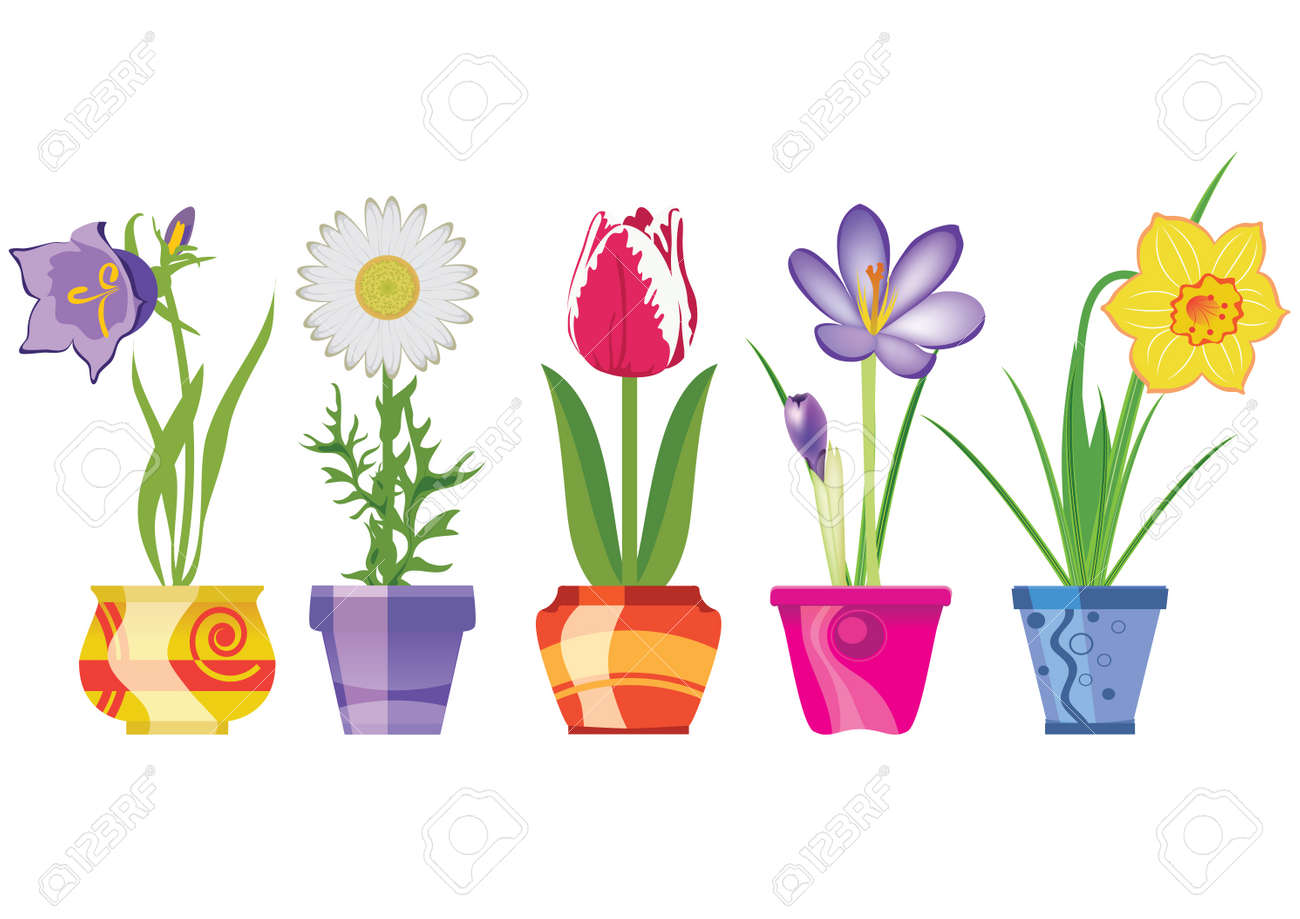 Spring Flowers In Pots, Isolated On White Background, Vector Illustration - 13796648