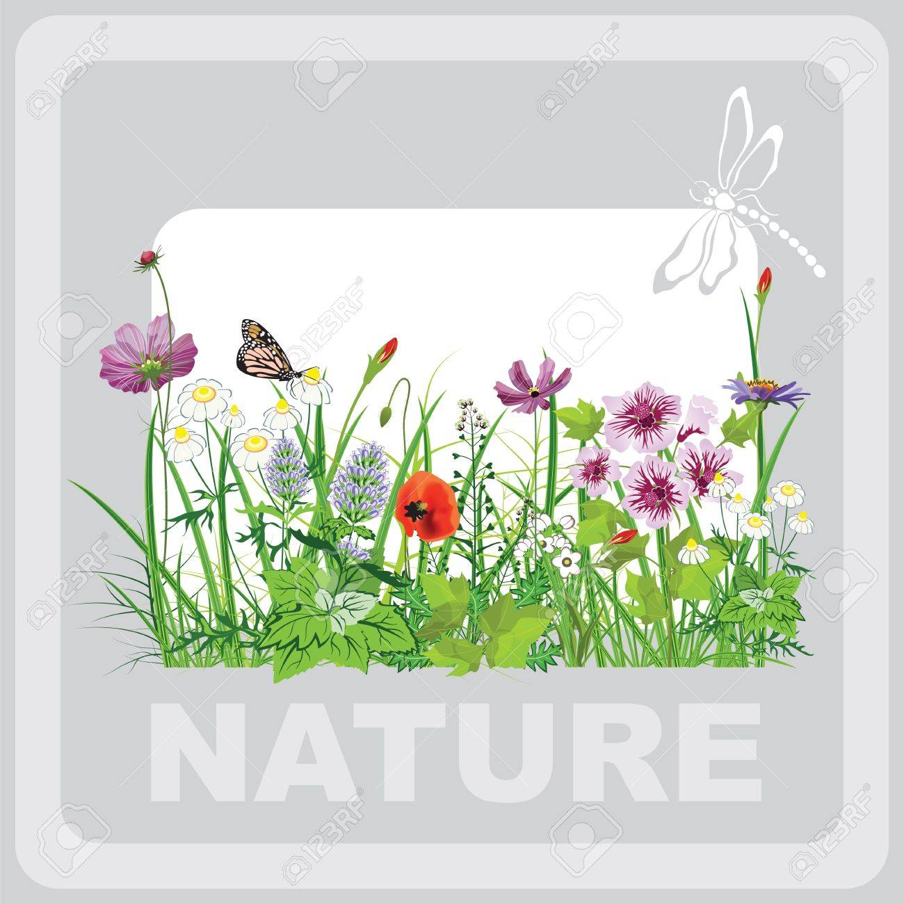 Green grass and flowers, landscape natural, banner in art Stock Vector - 17333790