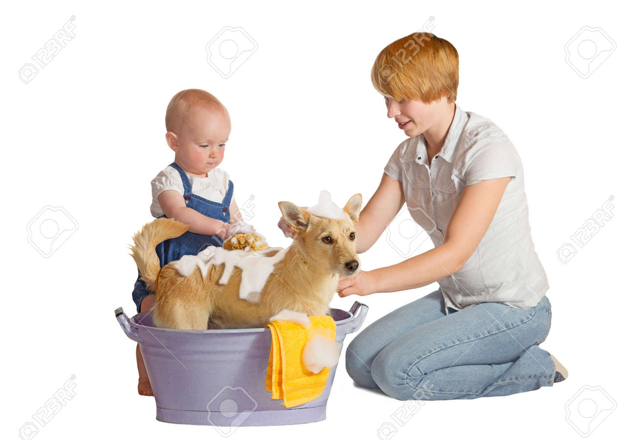 Mother and baby washing their dog - isolated on white Stock Photo - 14893310