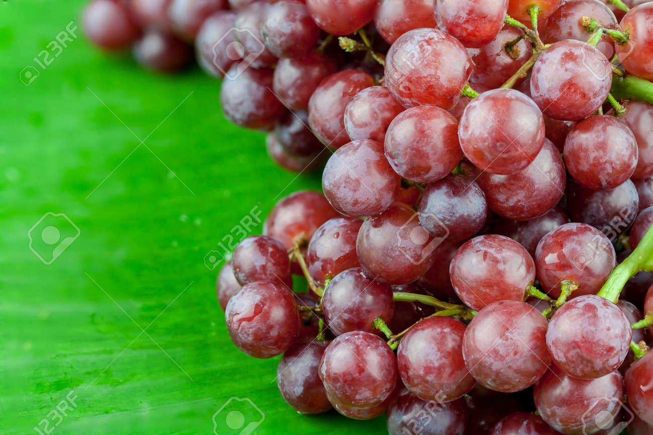 bouquet de raisins rouges, isolé sur fond de feuille de bananier