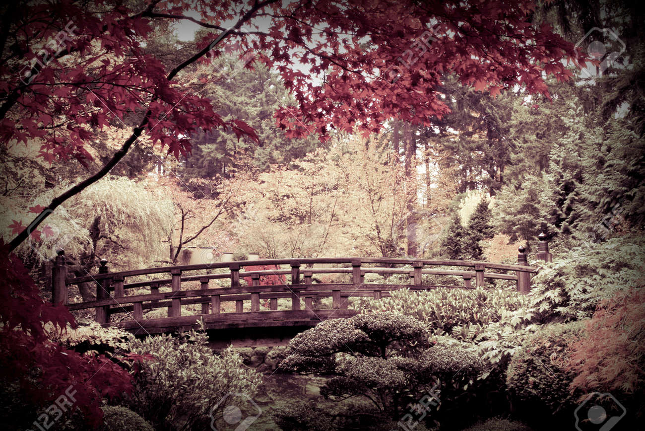 Japanese Art: Arched Bridge In A Japanese Garden
