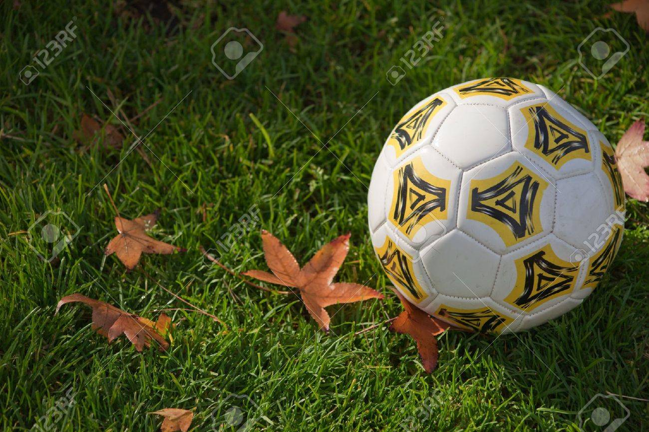 A close up of a soccer ball on green grass with fall leaves. Banque d'images - 6104209