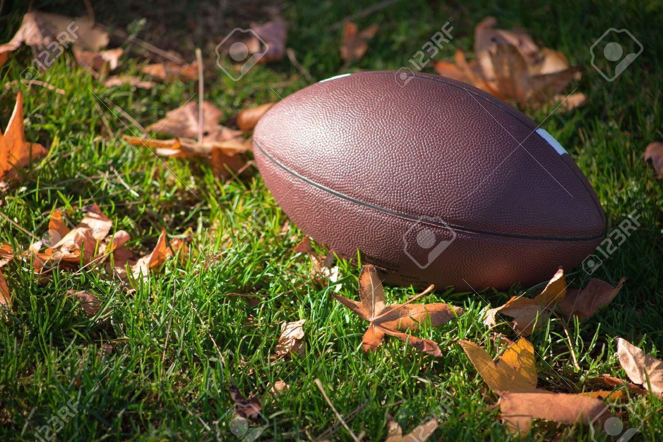 Une étroite un football américain autour de graminées et de feuilles.  Banque d'images - 6119755