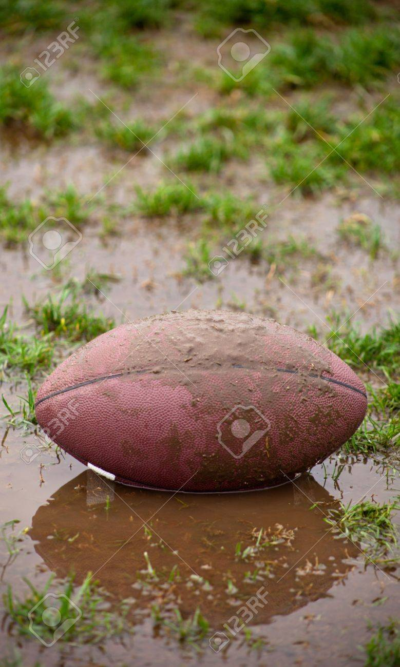 A close up of a football sitting in muddy water and grass. Banque d'images - 6265526