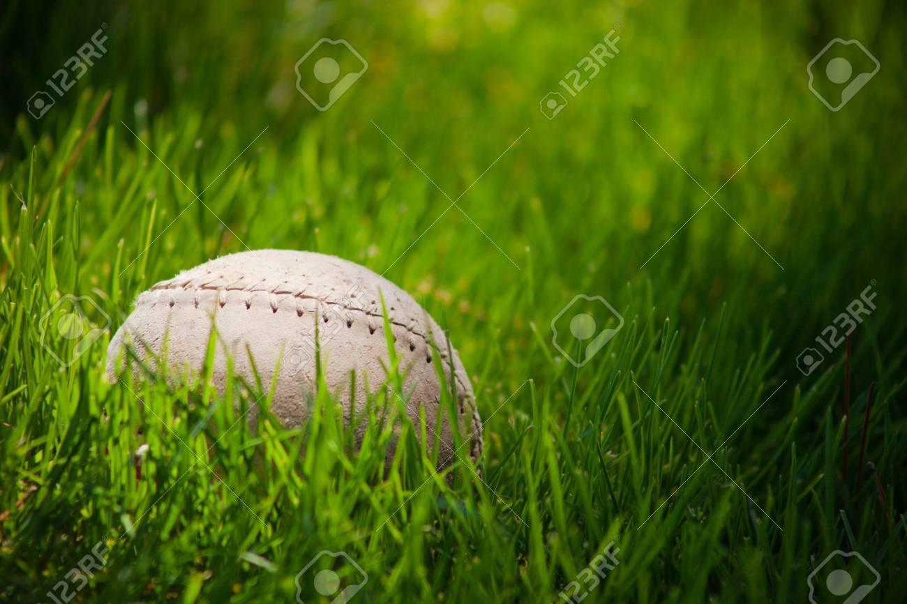 A close up of a old soft ball rolling through tall green grass. Banque d'images - 7573884