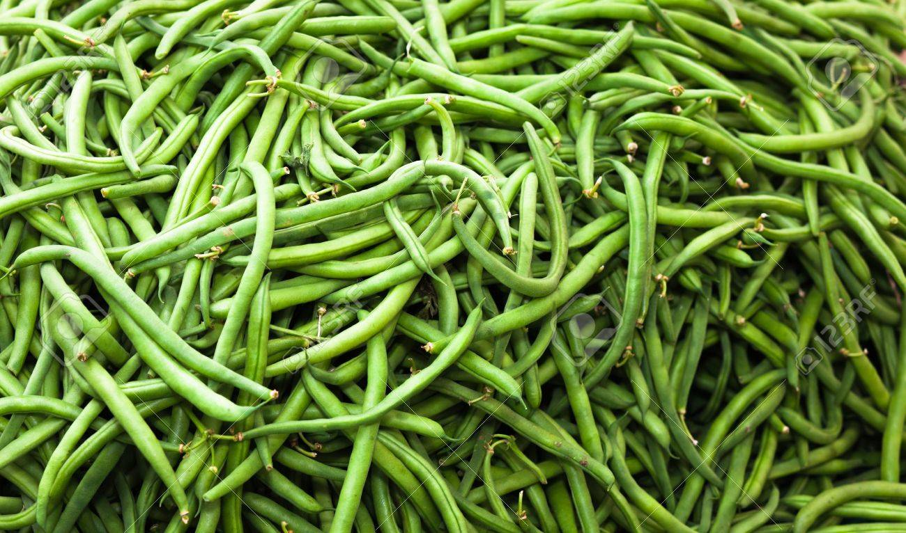 A close up of a large pile of string Beans. Banque d'images - 9857331