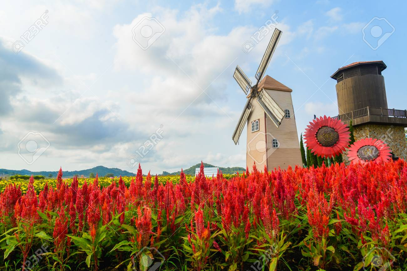 Wind Turbine at chonburi province (Thailand.) Stock Photo - 18672341