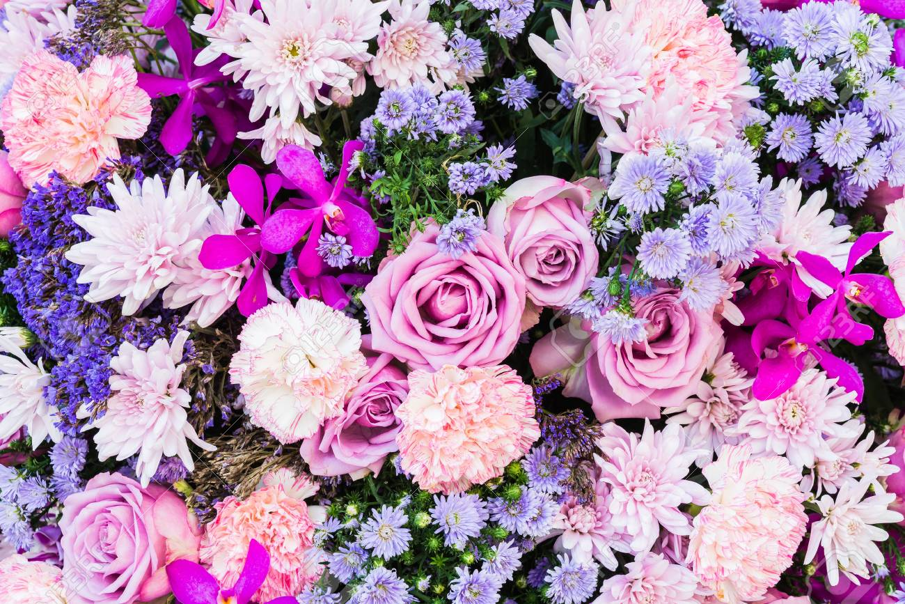 colorful nature flower backgrounds stock photo picture and royalty