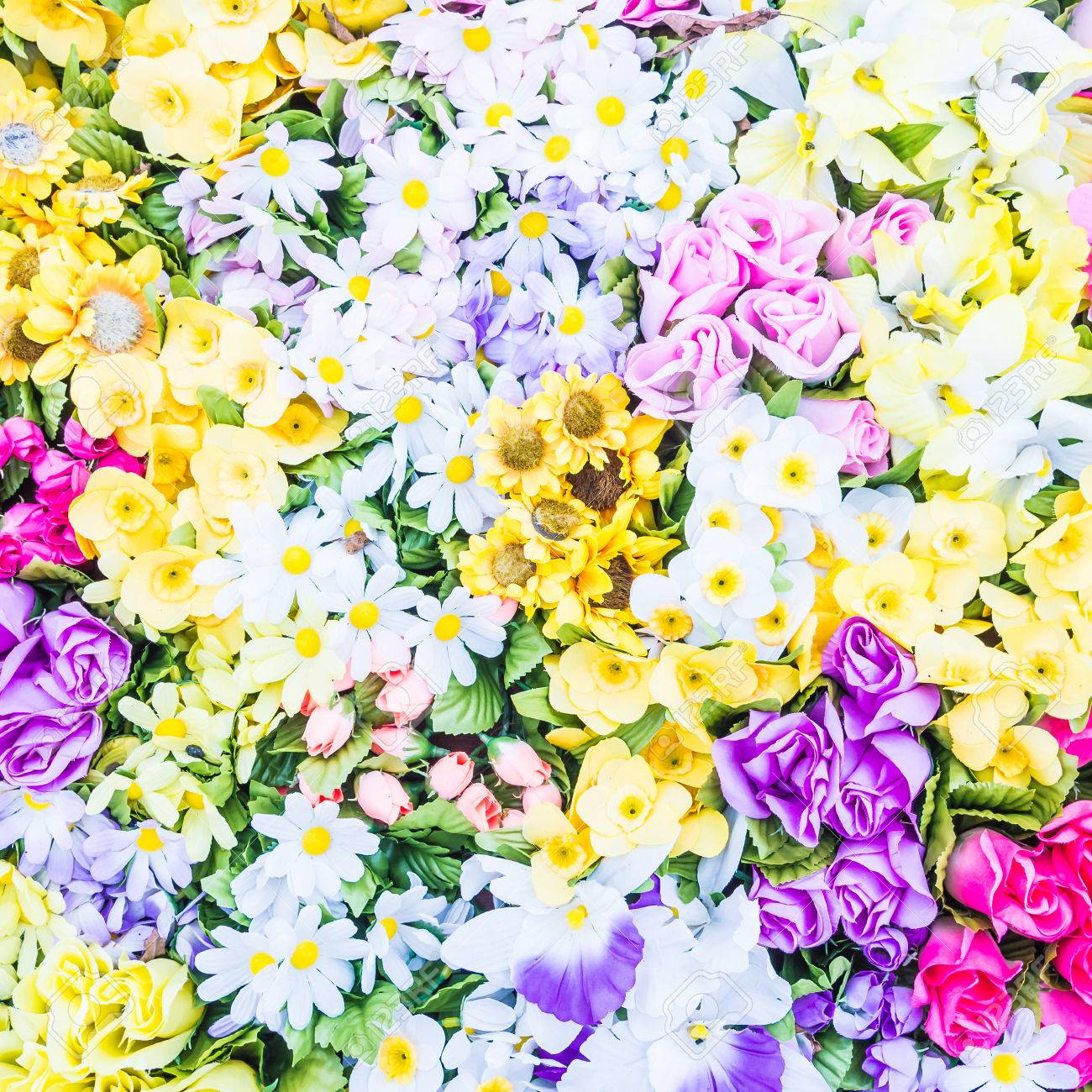 Beautiful Flower Backgrounds Stock Photo Picture And Royalty Free