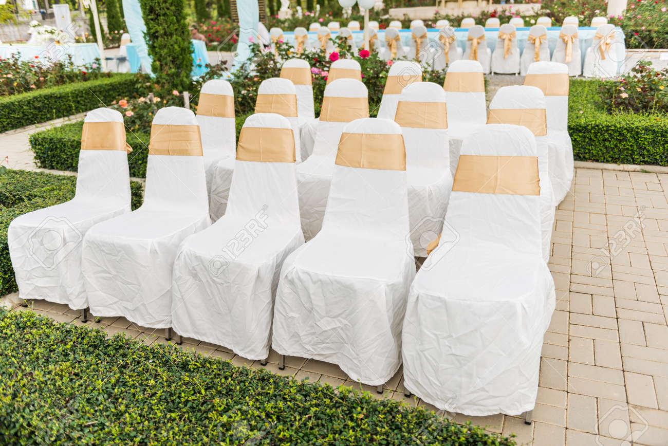 Wedding garden chairs - Wedding Chairs In Row Decorated With Golden Color Ribbon In The Garden Stock Photo 23897202