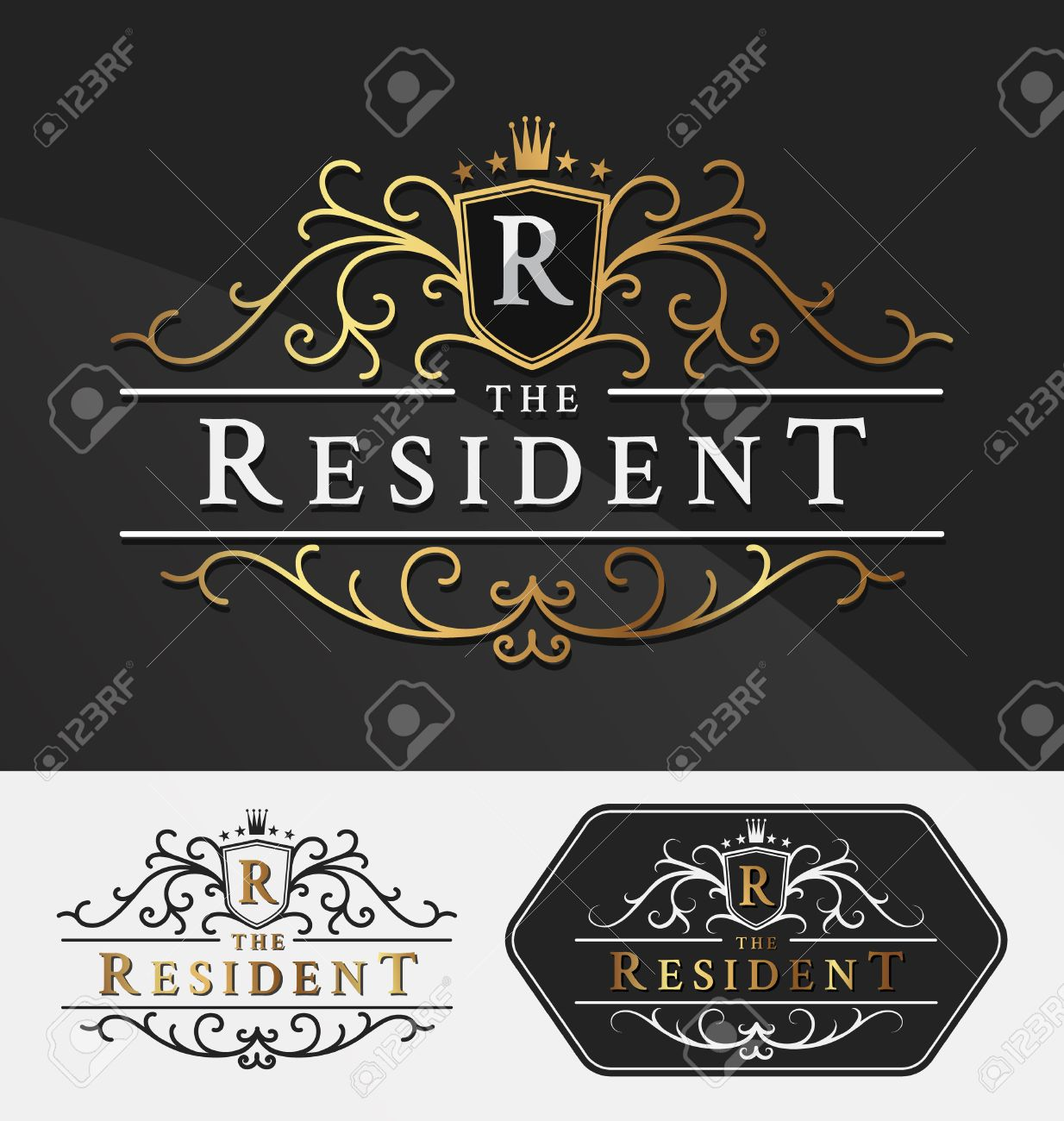 Luxurious Royal Logo Vector Re-sizable Design Template Suitable For Businesses and Product Names, Luxury industry like hotel, wedding, restaurant, jewelry and real estate. - 46969349