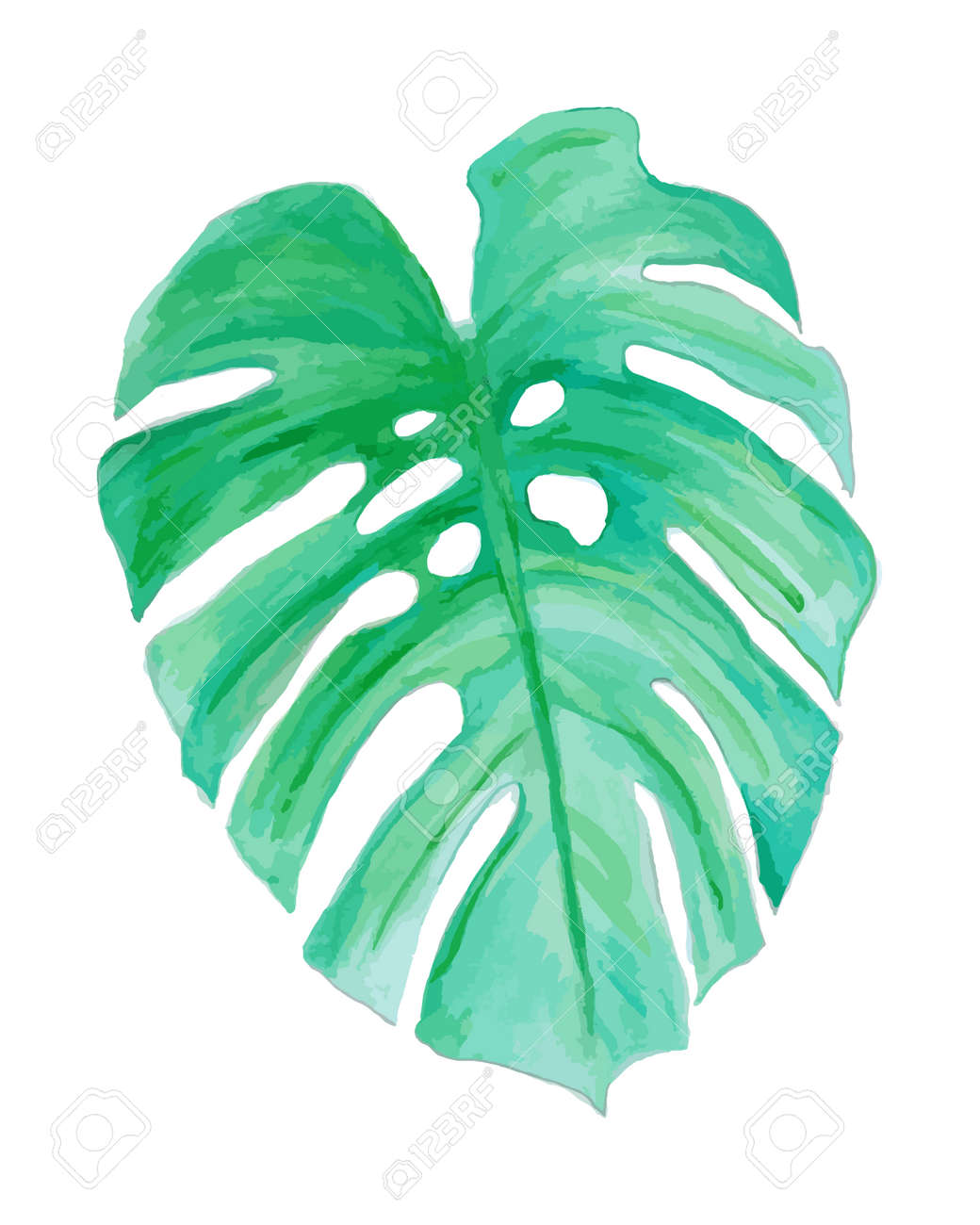 Watercolor Drawing Palm Trees Or Green Leaves Royalty Free Cliparts Vectors And Stock Illustration Image 56875341