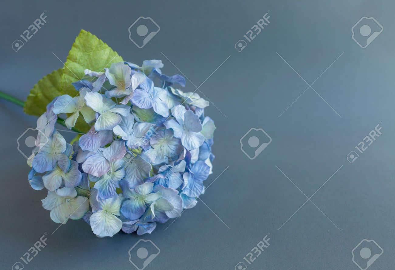 Closeup Paper Hydrangea Flower On Grey Background Stock Photo