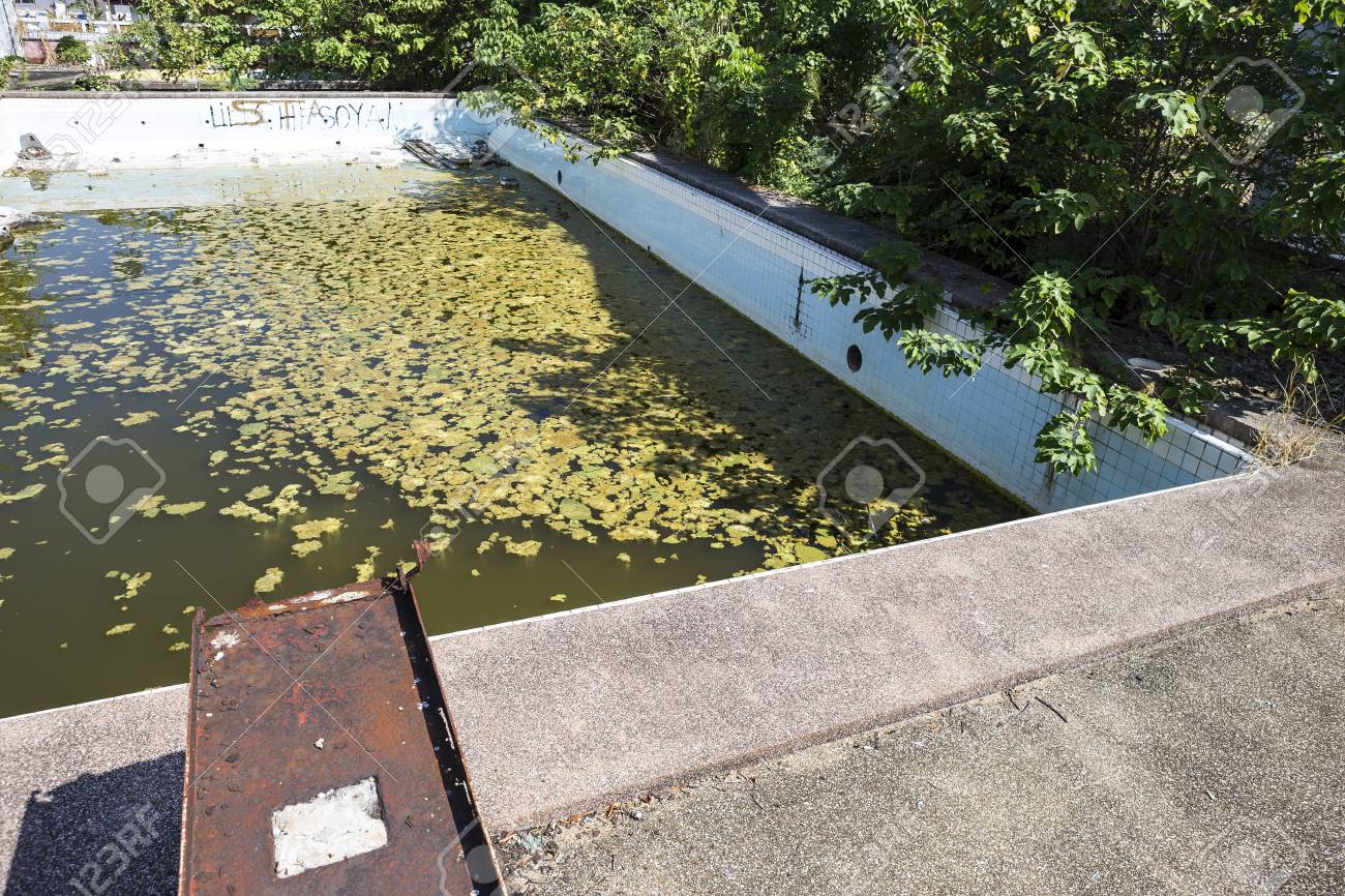 Abandoned old swimming pool, duckweed growing on dirty water