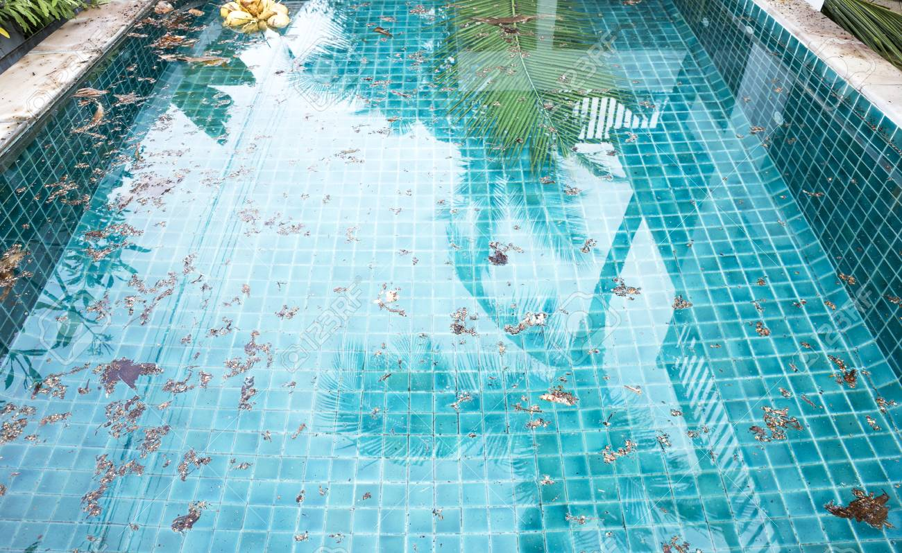 Dirt floating on clear swimming pool water surface, pool cleaning