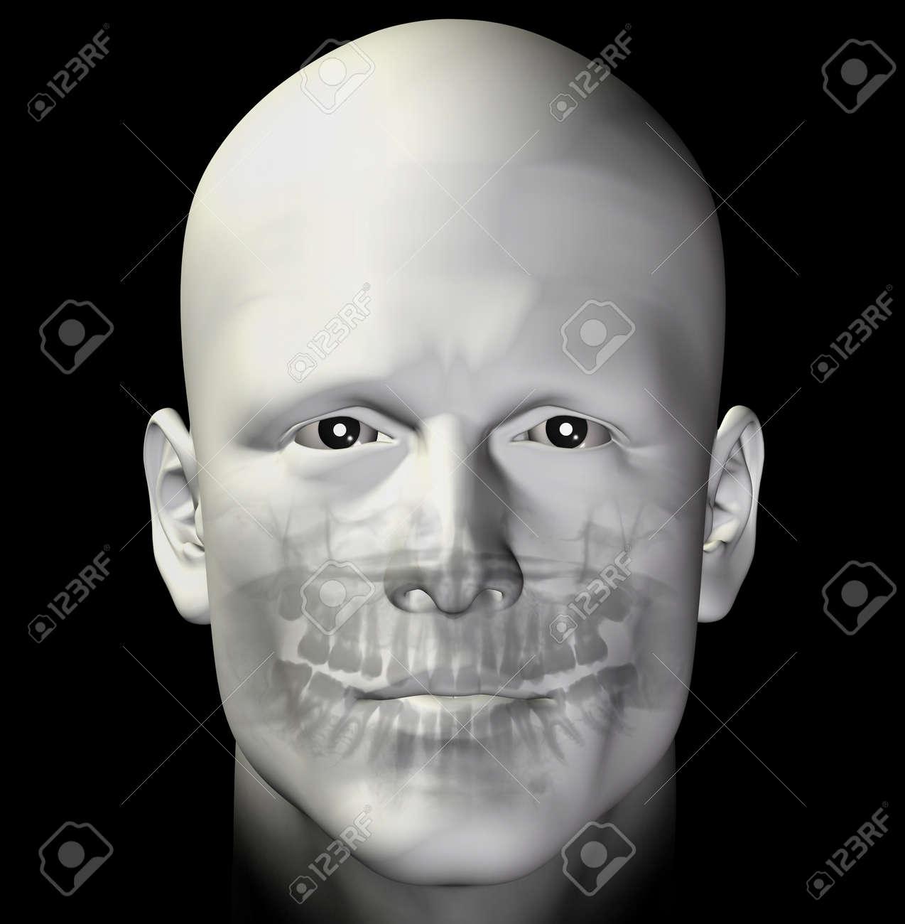 Adult man dental scan x-ray. 3d illustration. Stock Illustration - 9217058