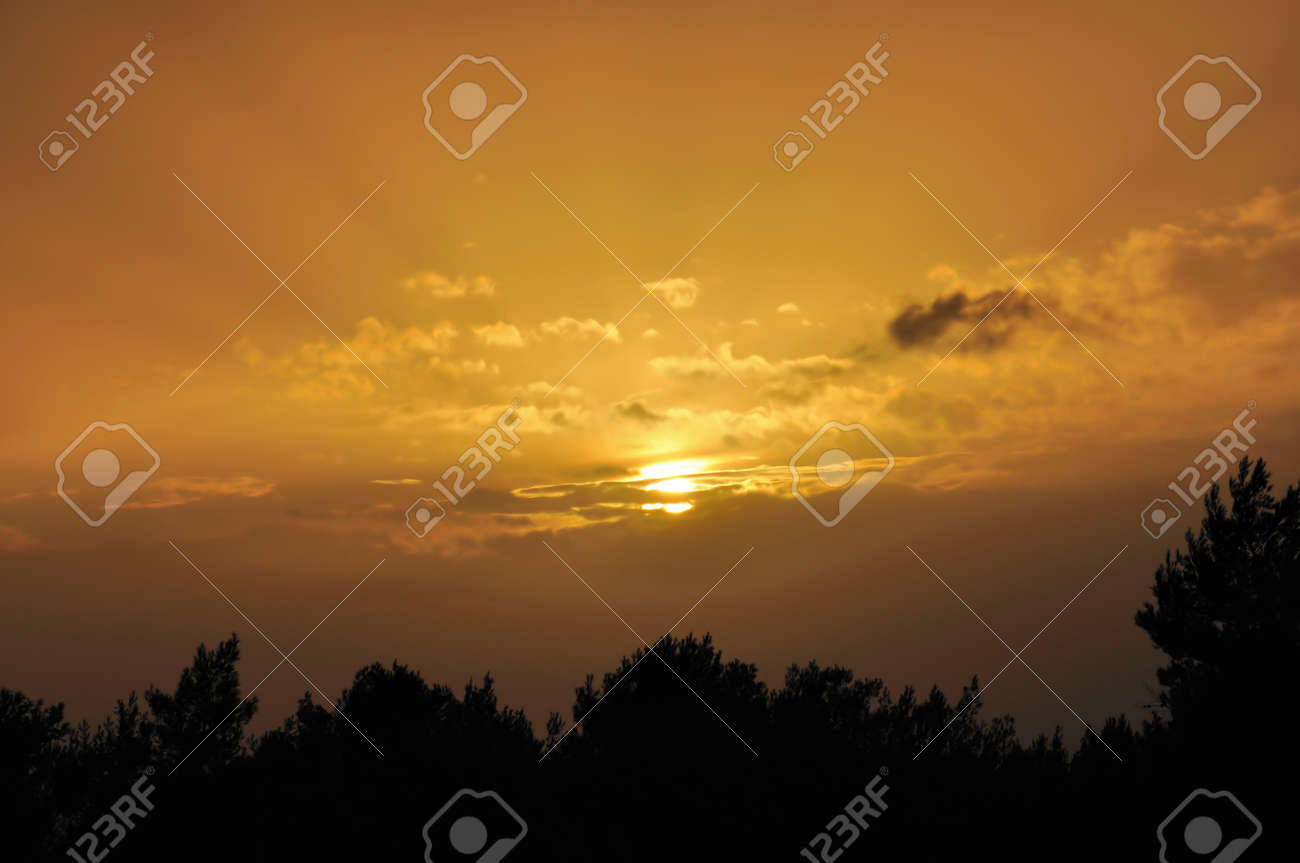 Setting sun behind clouds. Sunset colored sky and tree silhouettes. Stock Photo - 9217052