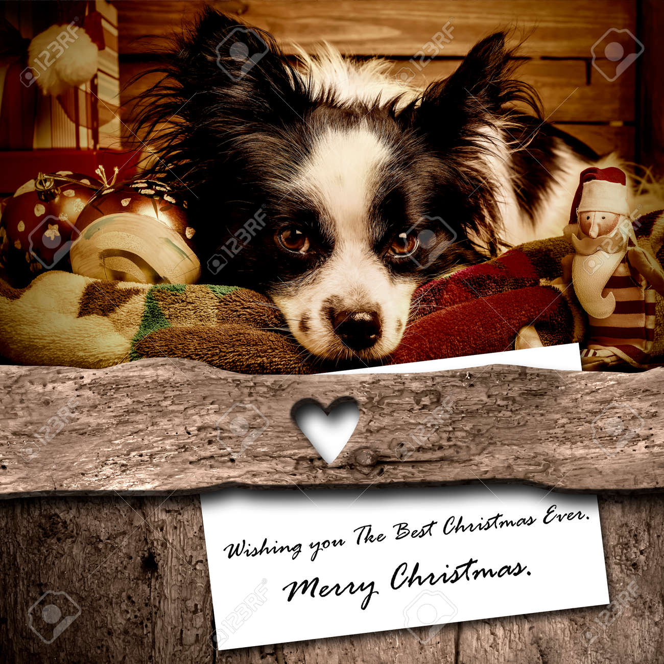 Dog And Santa Christmas Card Composition, Cute Dog And Letter ...