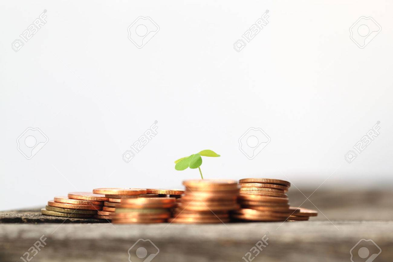 Small seedling growing in coins - 46784515