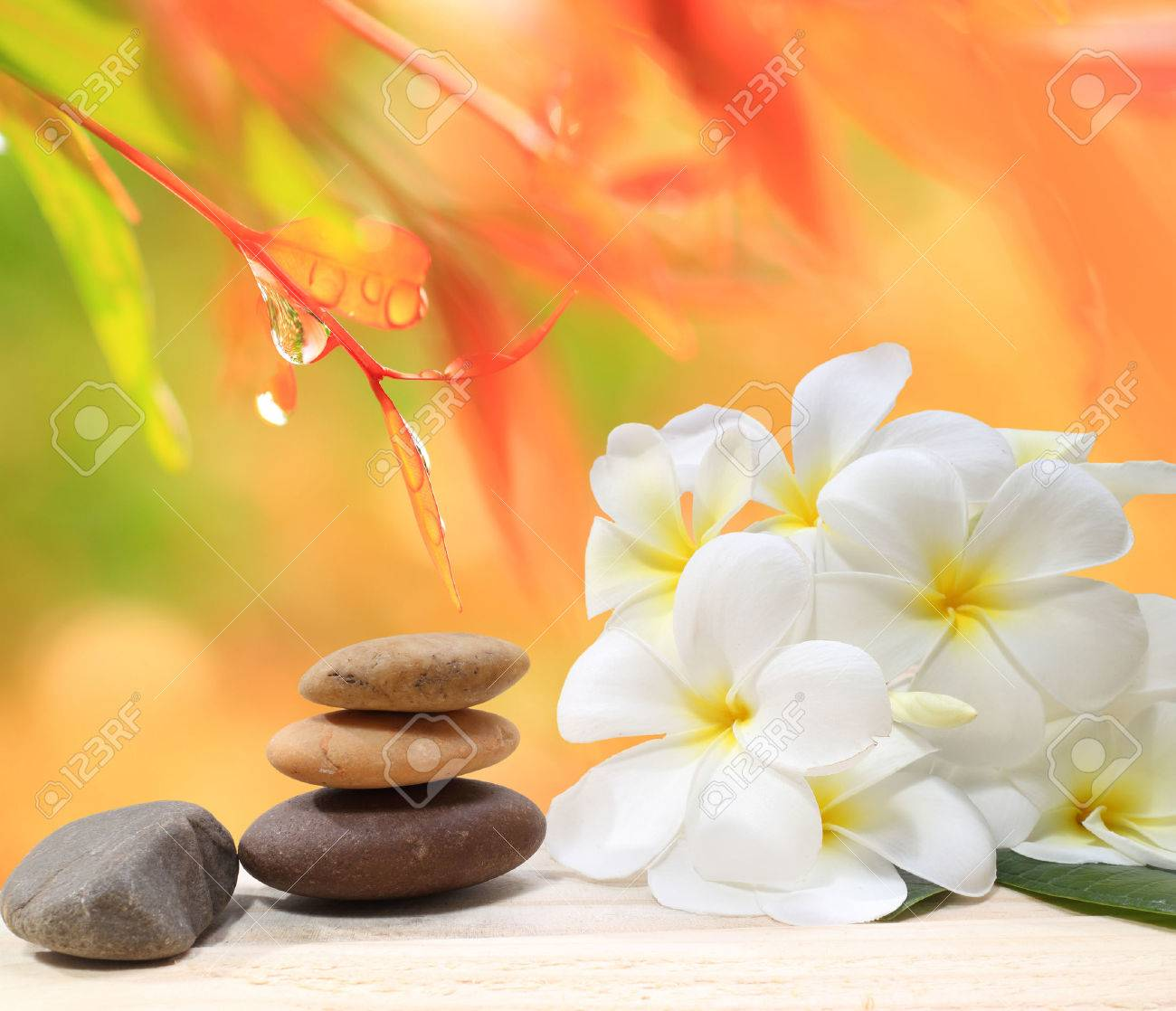 Zen spa concept background - Zen massage stones with frangipani plumeria flower and Water drops on the nature background - 48959385