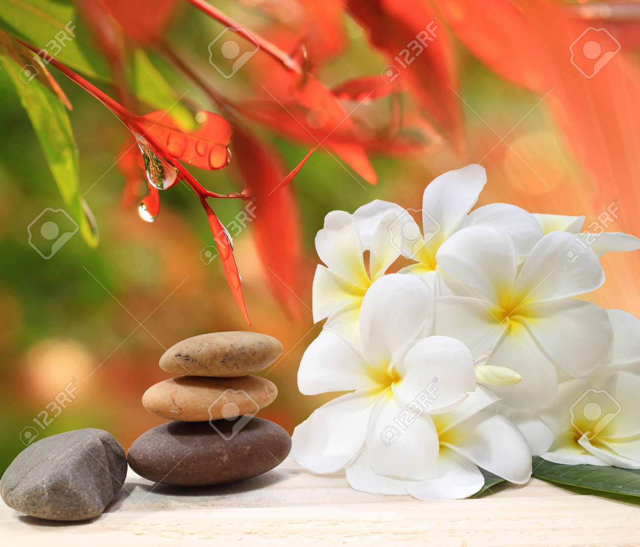 Zen spa concept background - Zen massage stones with frangipani plumeria flower and Water drops on the nature background - 48959582