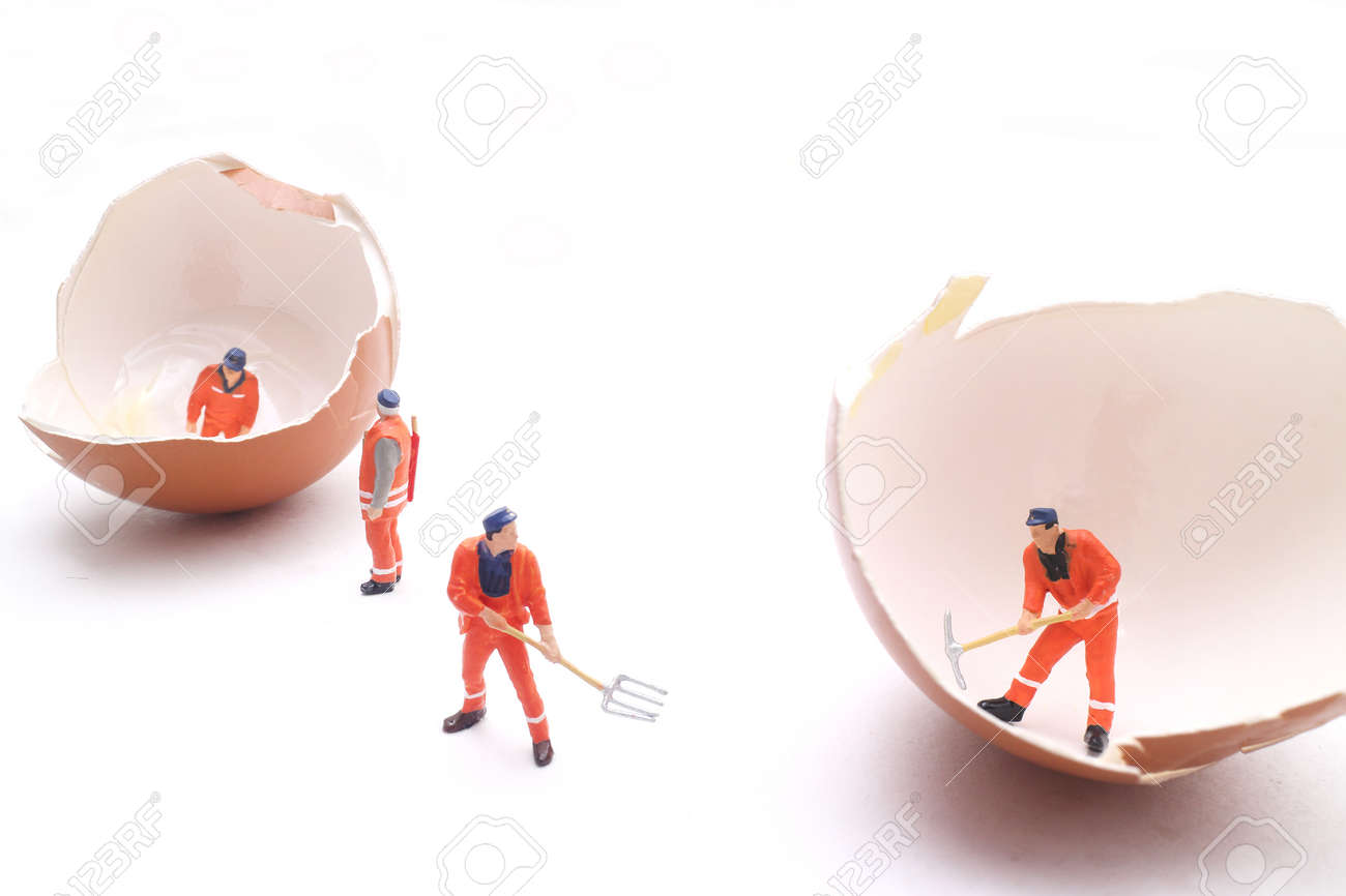 selective focus of miniature worker people working on egg , white background for idea concept. - 64122170