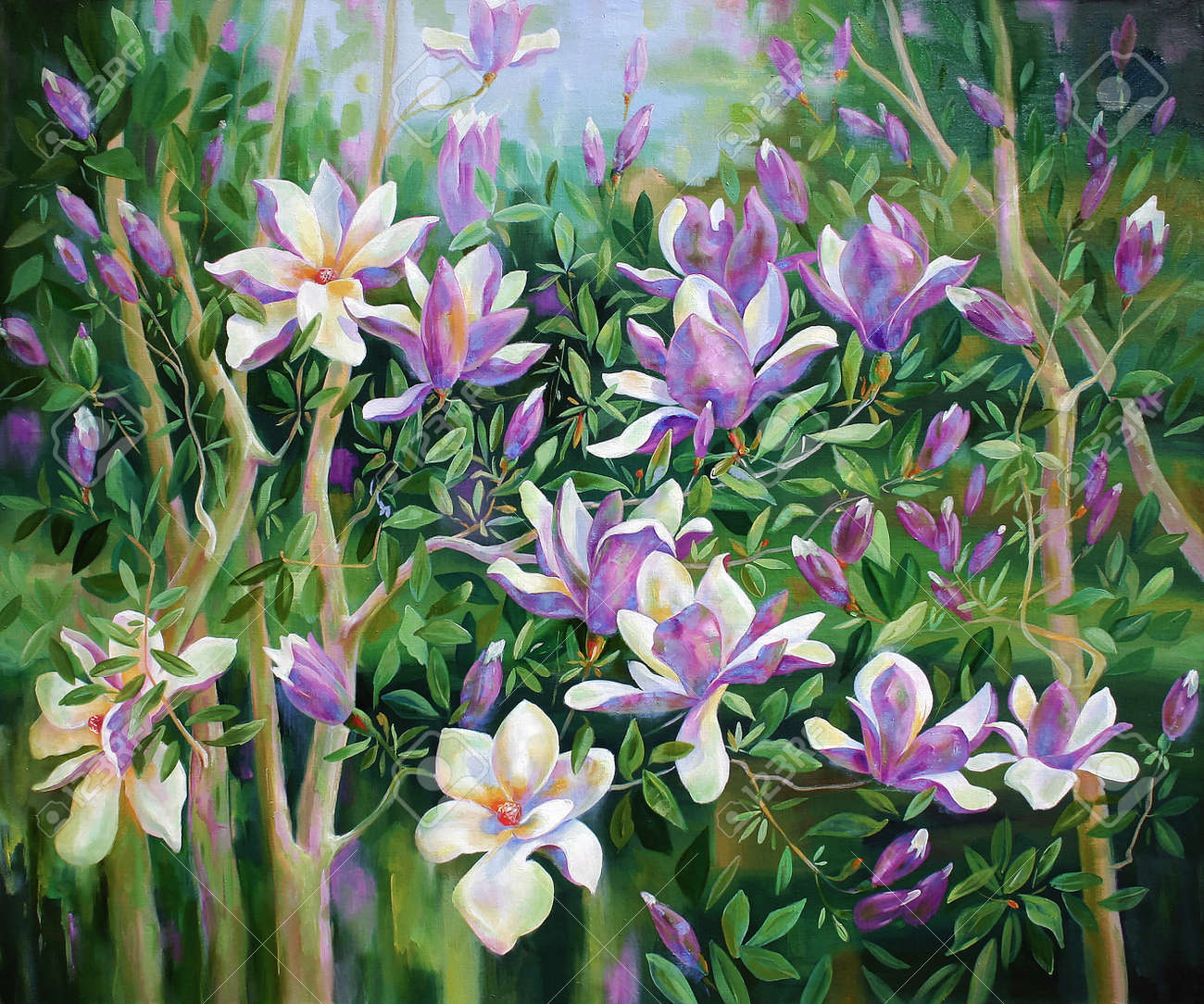 Oil painting on canvas. Blooming magnolia Sulange on the branches of a tree. - 103318509