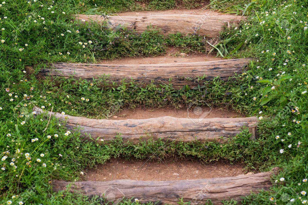 Escalier Extérieur Dans Le Jardin Avec Le Chemin En Bois Massif ...