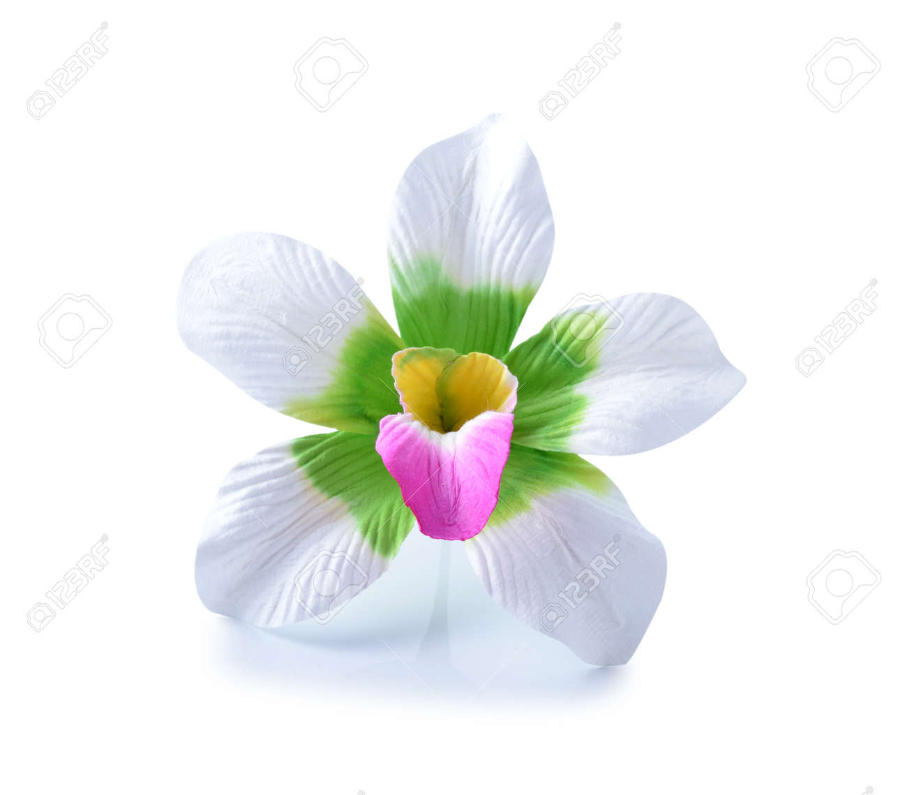 Artificial Hibiscus Flowers Stock Photo Picture And Royalty Free