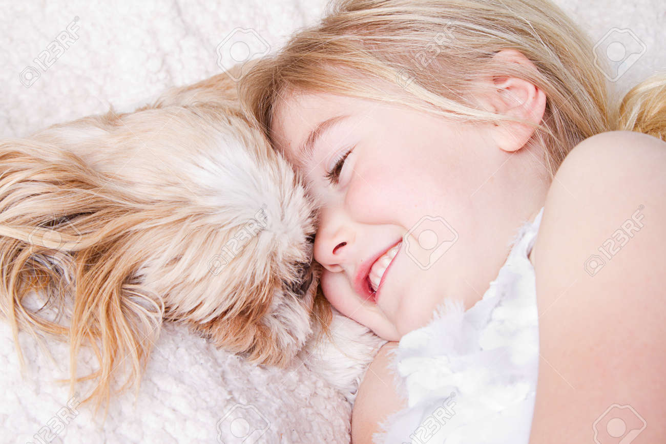 Young Girl Or Child Laying With A Shih Tzu Dog Stock Photo Picture