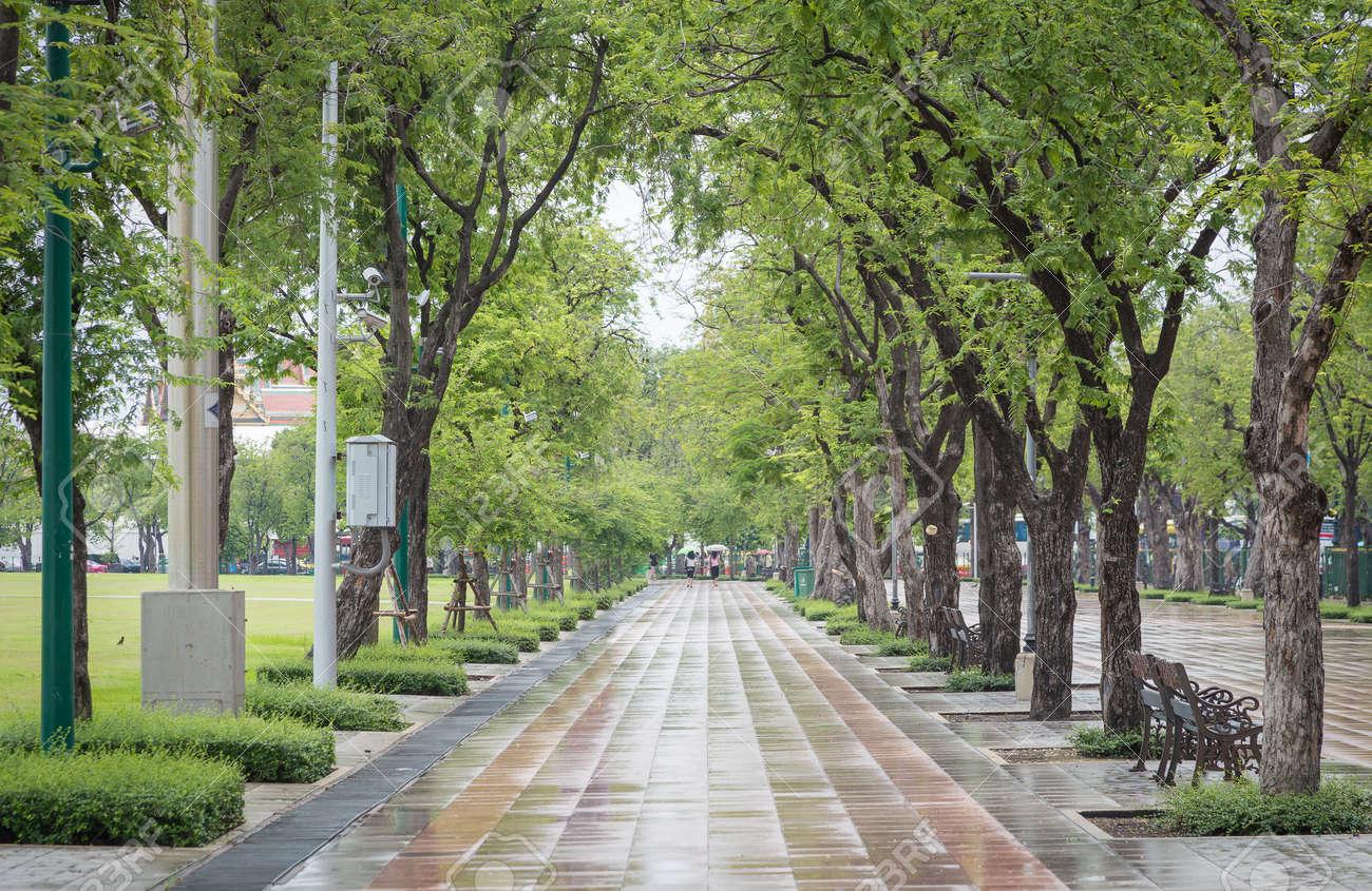 Tile walkway in public park of Thailand got wet after raining