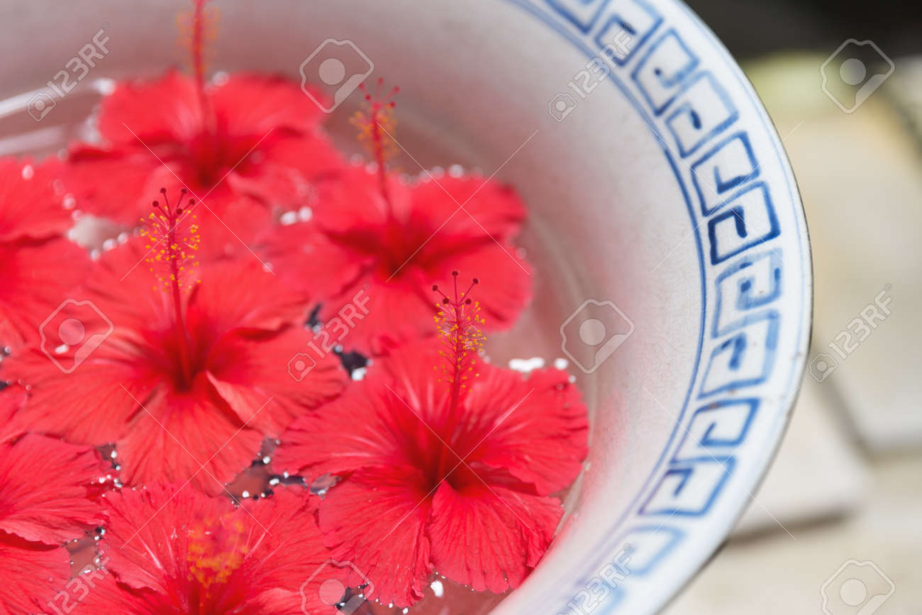 Close Focus On Pollen Of Red Hibiscus Flowers Floating On Water