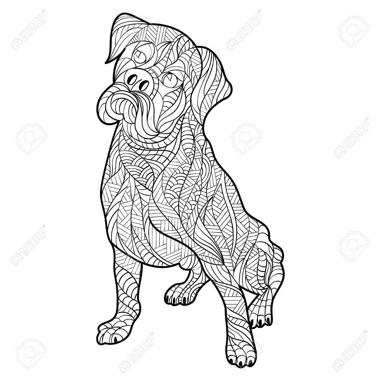 La Mano En Blanco Y Negro Del Vector Dibujado La Ilustración Zentagle De Perro Boxer Página Para Colorear Con Detalles Altos Aislados Sobre Fondo