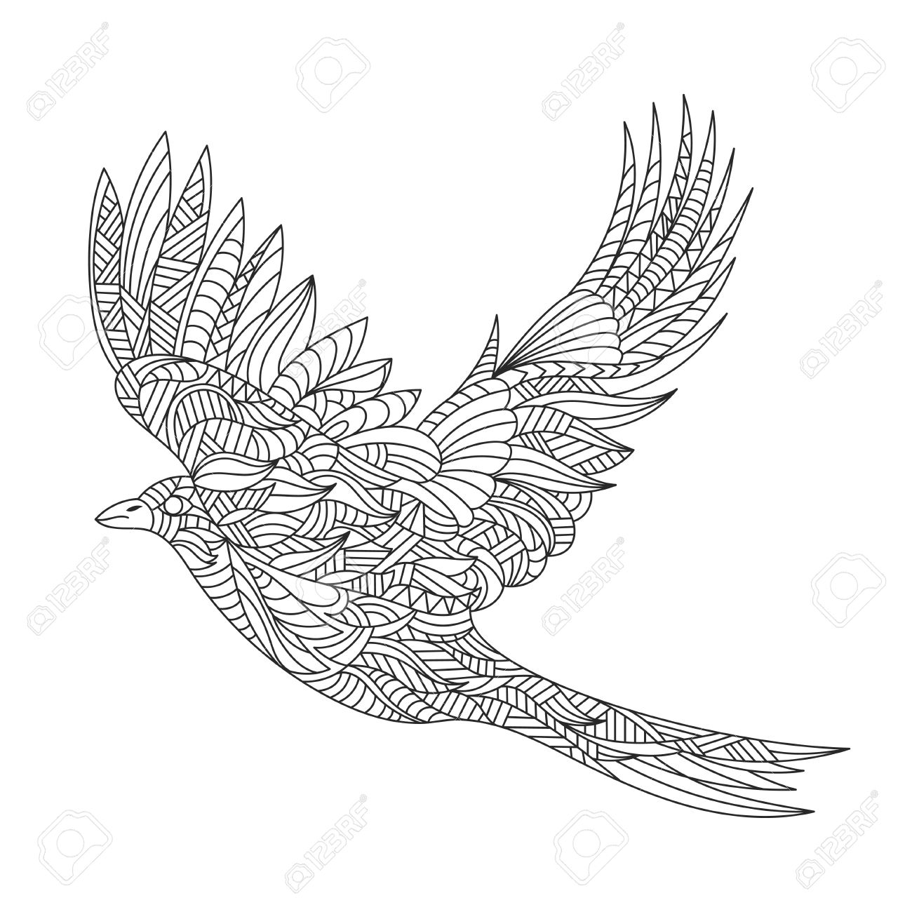 Vector Monochrome Hand Drawn Zentagle Illustration Of Magpie. Coloring Page  With High Details Isolated On