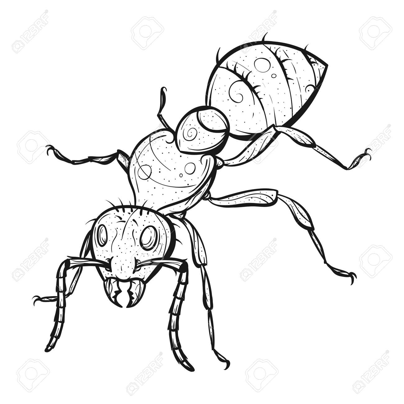 Vector Monochrome Hand Drawn Zentagle Illustration Of Ant. Coloring ...