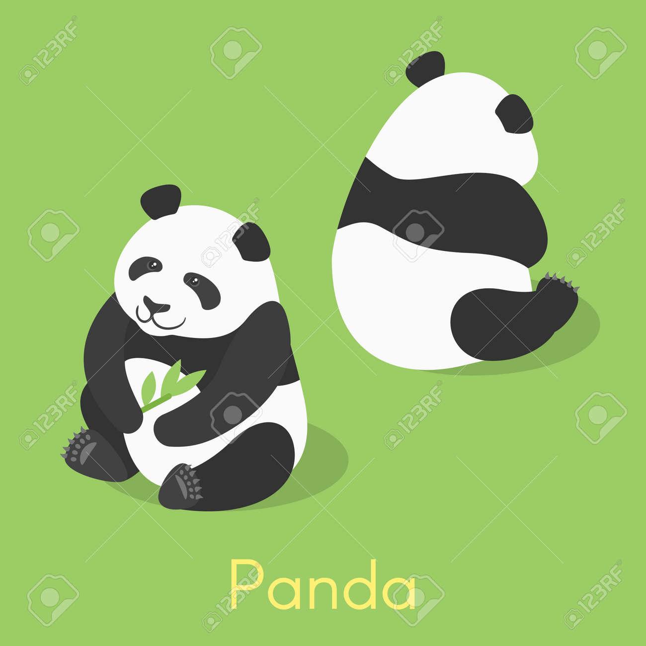 Vector isometric illustration of panda. Panda holding bamboo branch. - 58895928