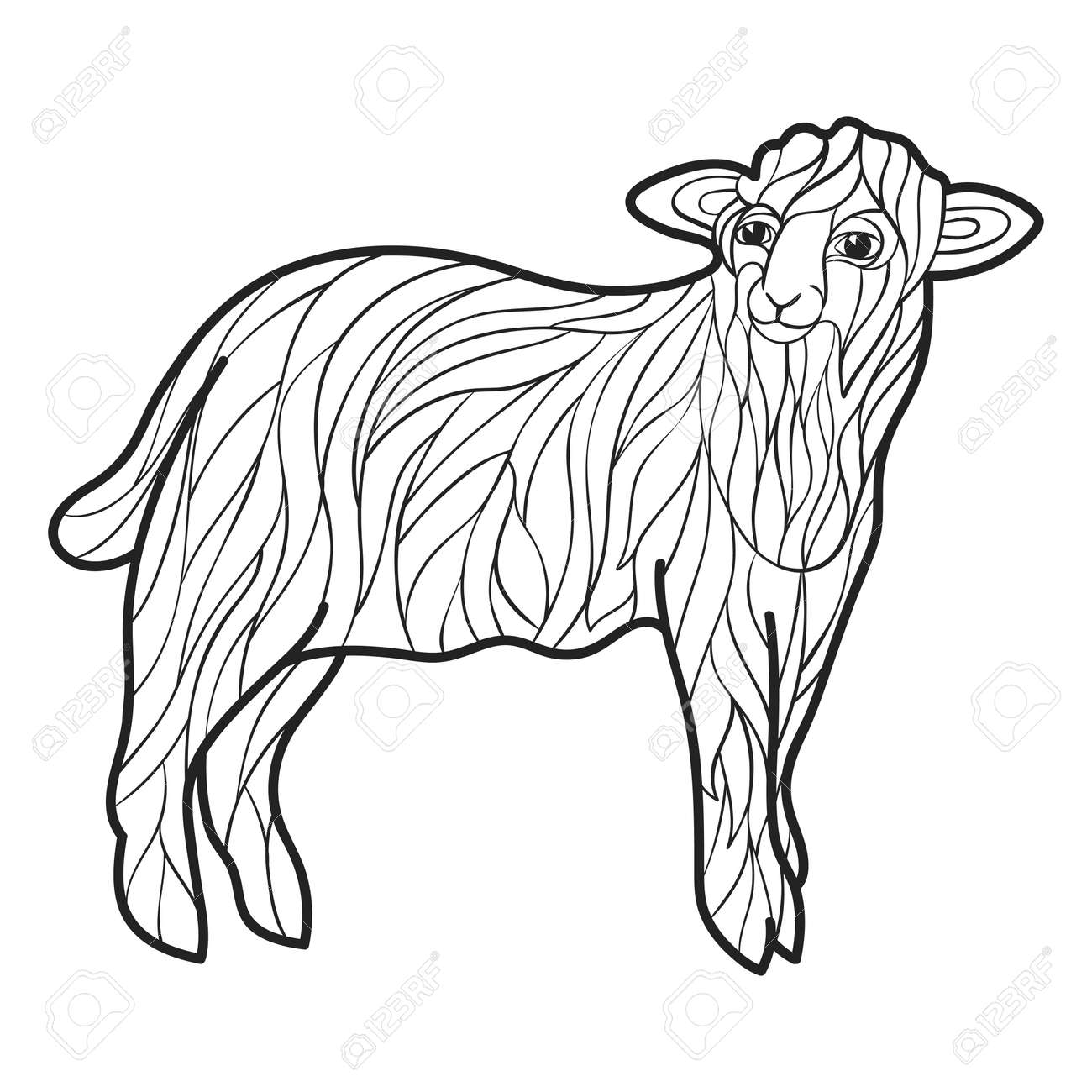 Vector Monochrome Hand Drawn Illustration Of Sheep. Coloring ...