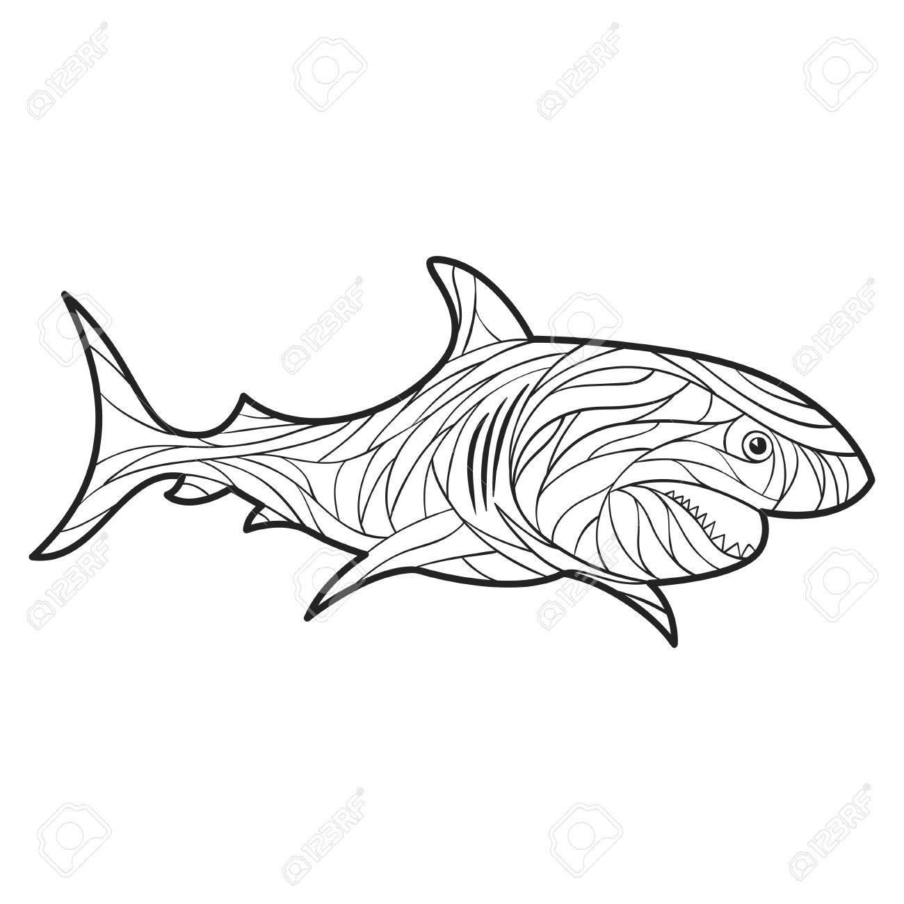 Vectorial Blanco Y Negro Dibujado A Mano Ilustración De Tiburón ...