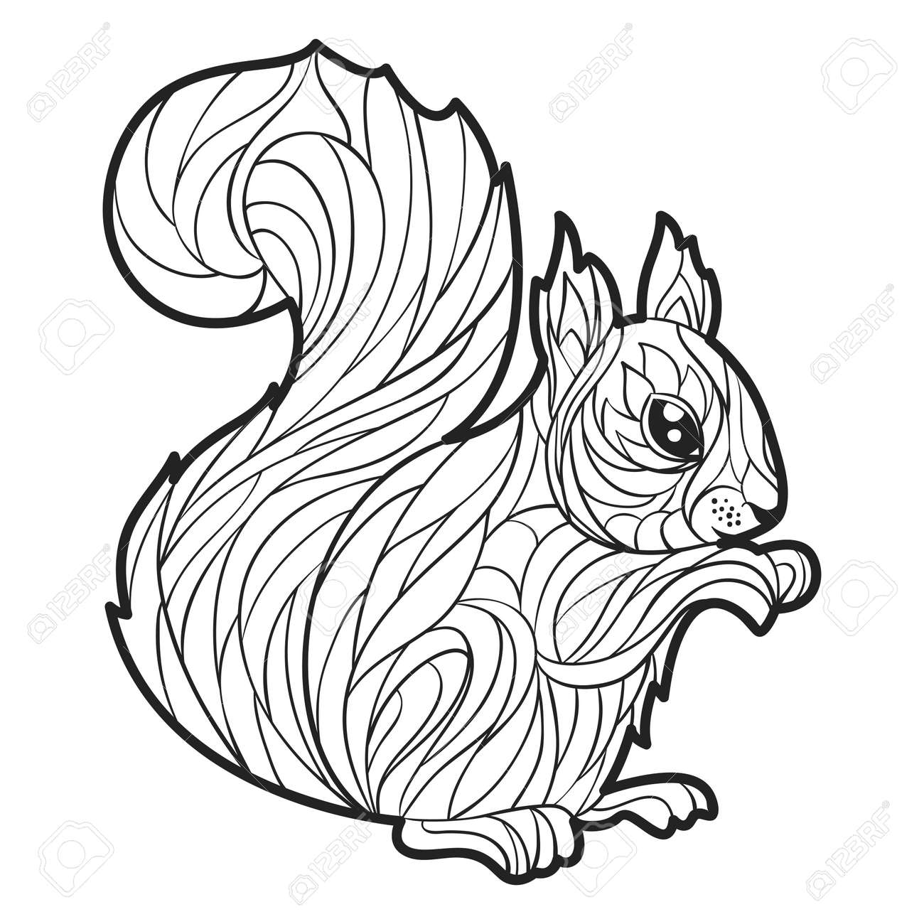 Vector Monochrome Hand Drawn Illustration Of Squirrel. Coloring ...