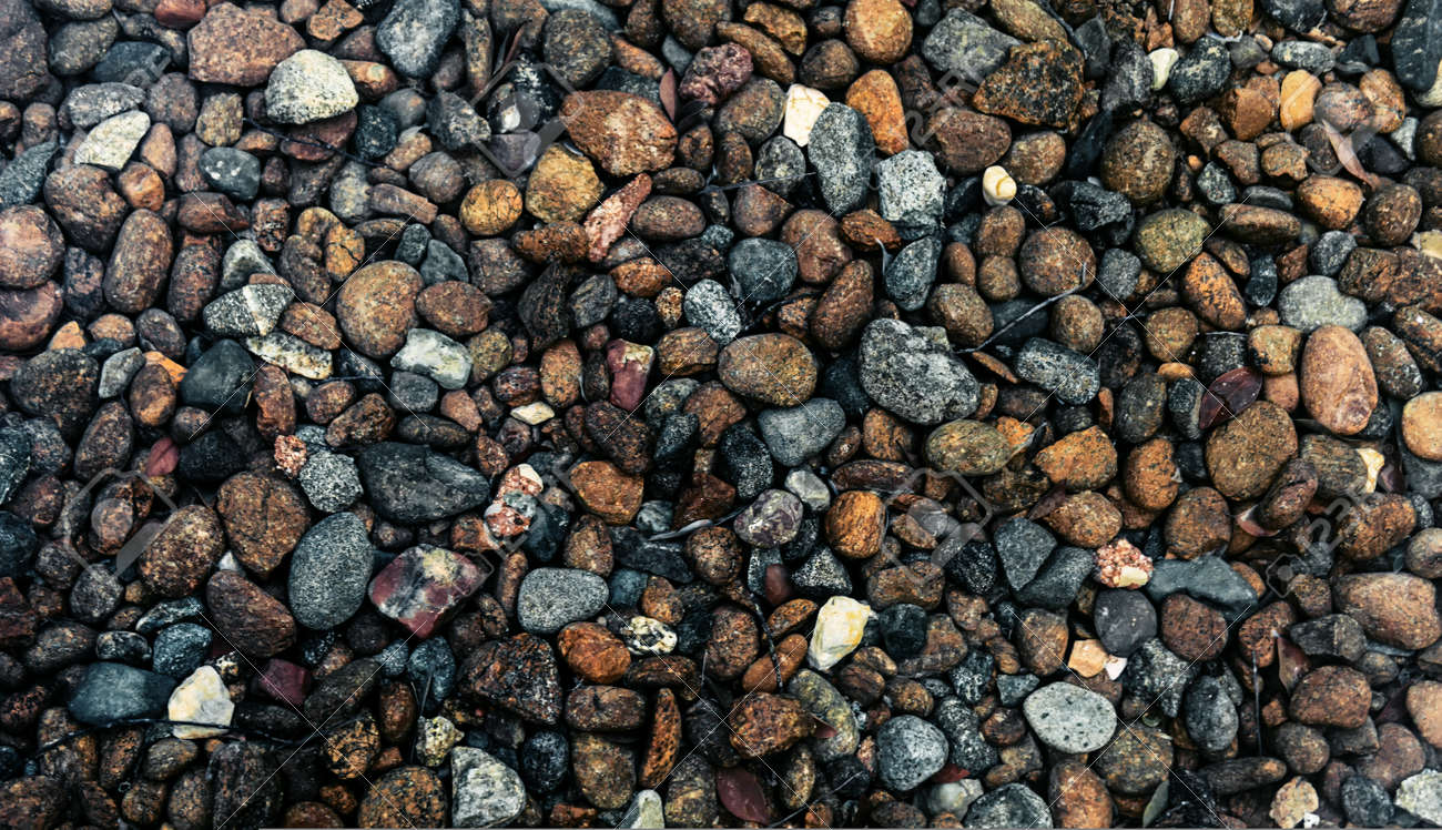 Humide détail de galets colorés au bord de la mer ou dans un jardin  paysager avec des couleurs assorties et des textures de pierres et de  roches de ...