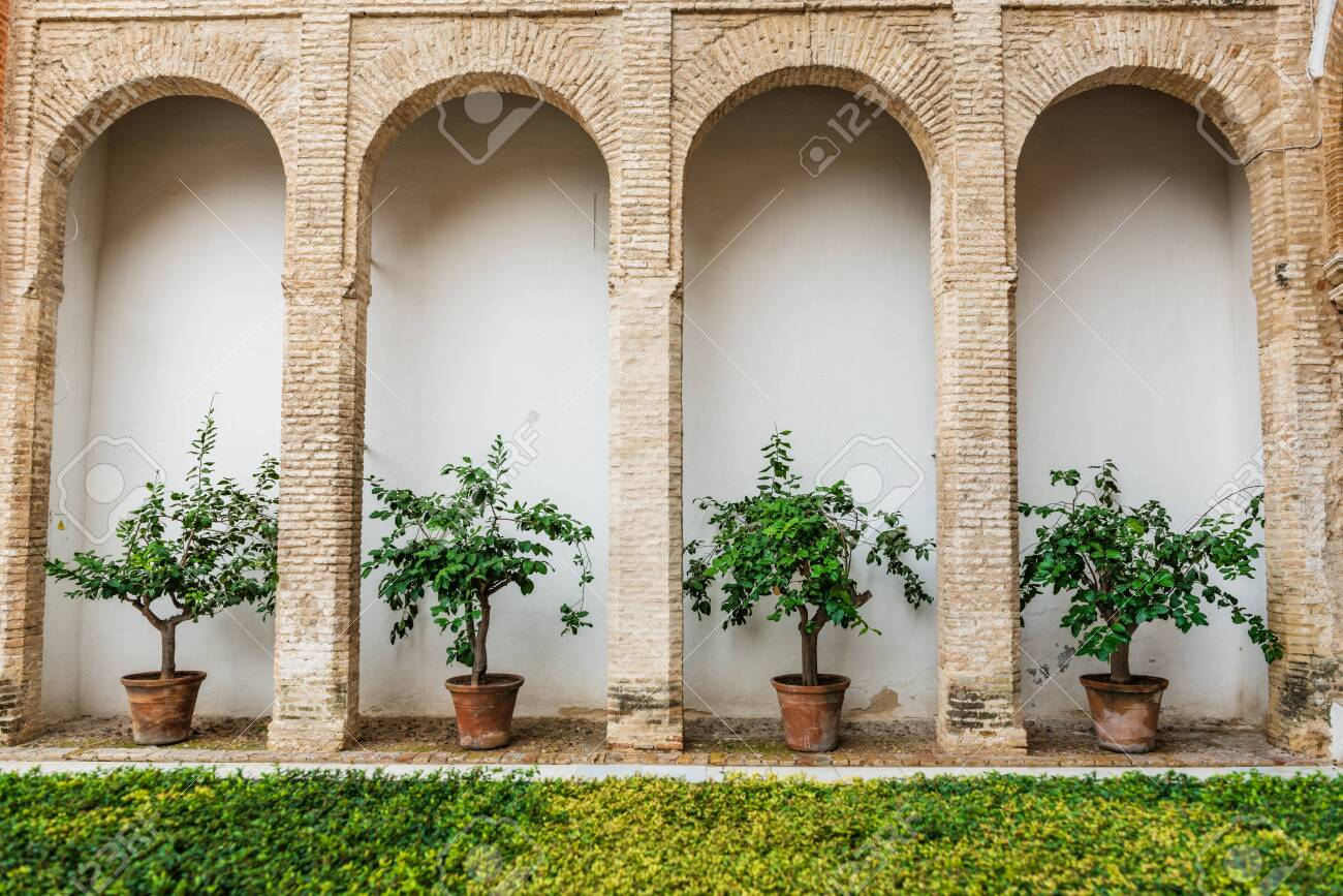 SEVILLE, SPAIN - December 09 2019: Row of potted plants in alcoves between arched pillars in Real Alcazar with fresh green grass in the foreground, Seville, Spain - 144093579