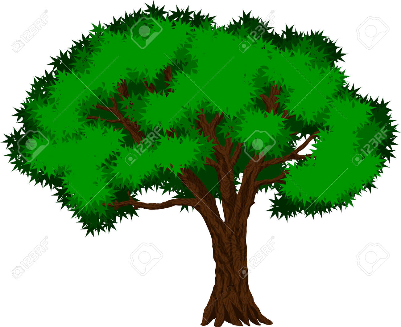 Tropical Jungle Rainforest Tree Royalty Free Cliparts Vectors And