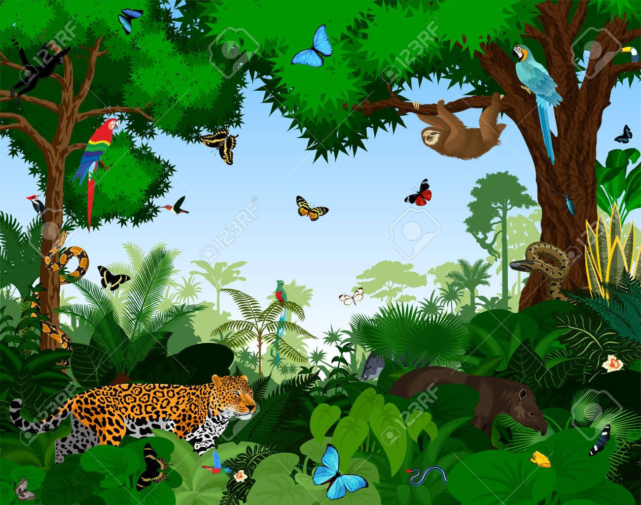Rainforest with animals vector illustration  Vector Green Tropical