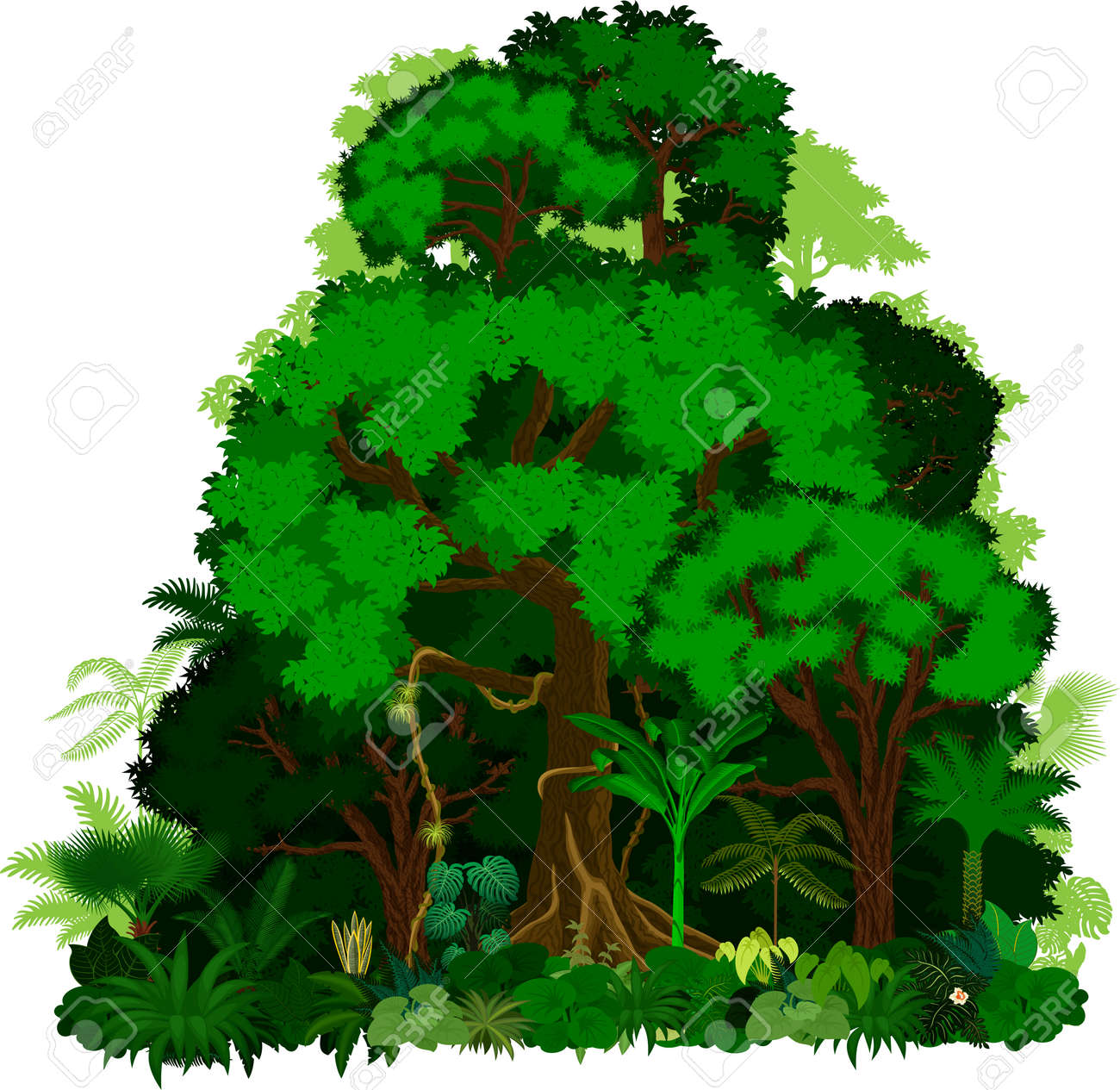 rainforest vector illustration vector green tropical forest rh 123rf com vector jungle free vector jungle free