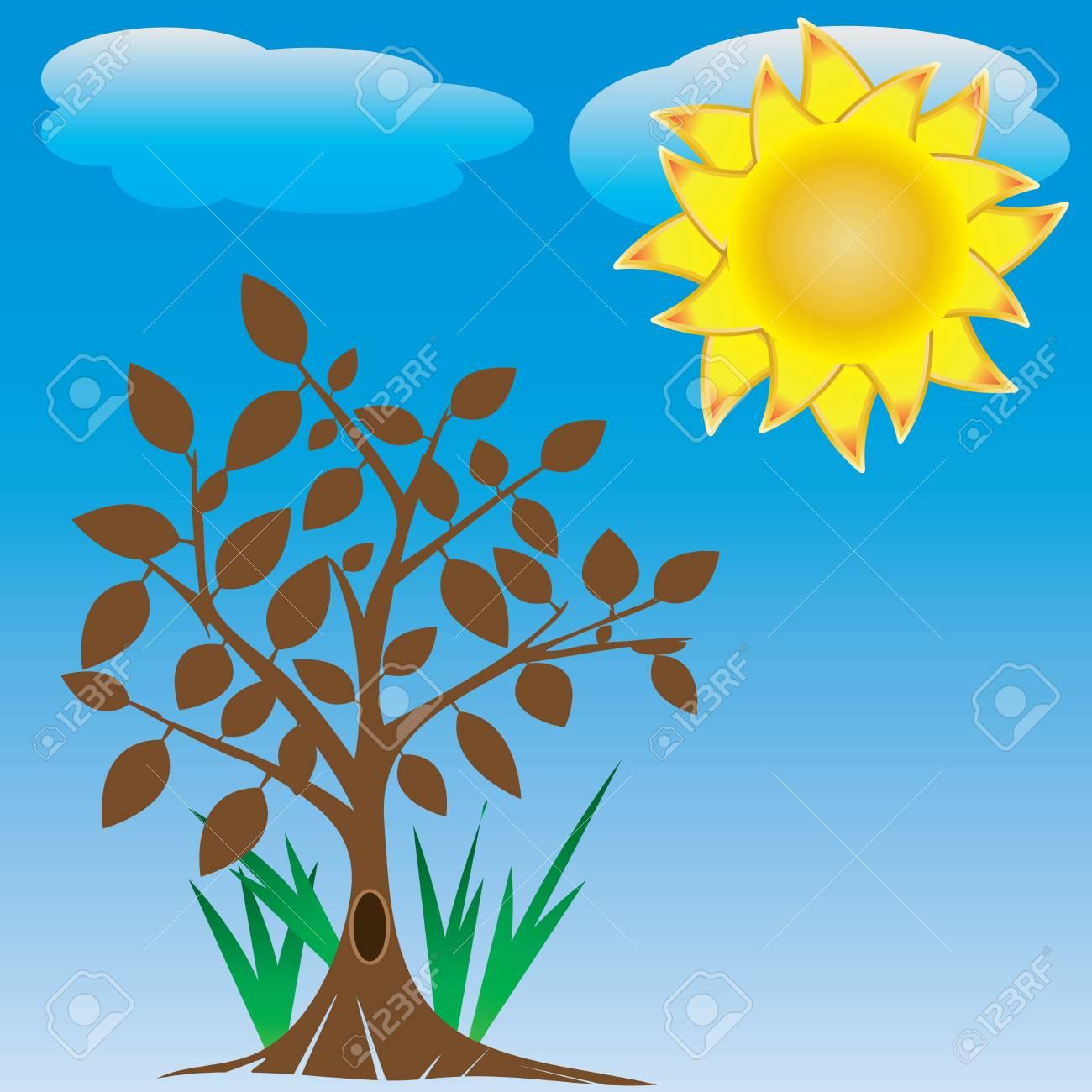 tree and sun Stock Vector - 13879085