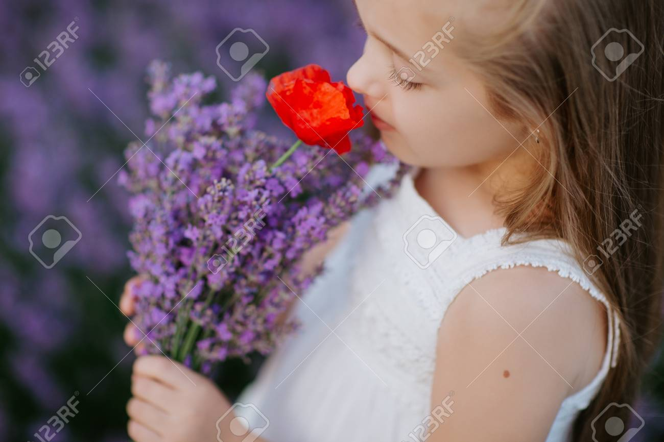Happy Cute Little Girl In Lavender Field Holding Bouquet Of Purple ...