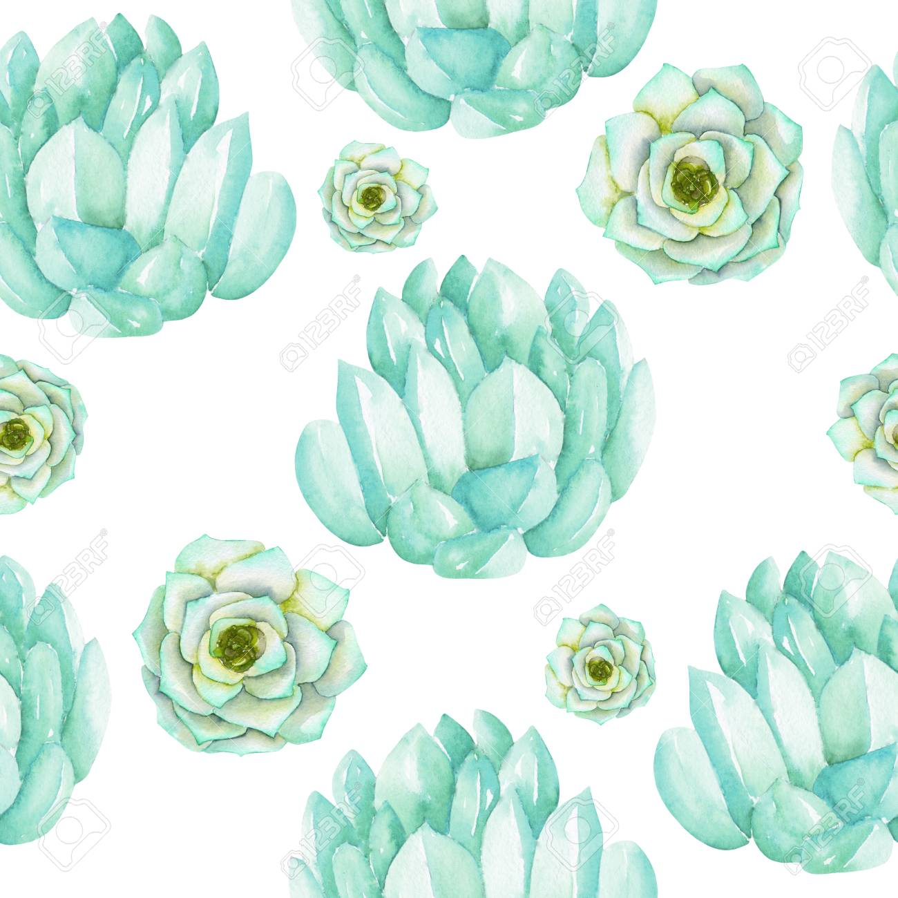 A Seamless Pattern With The Watercolor Blue And Mint Succulents Stock Photo Picture And Royalty Free Image Image 53840147