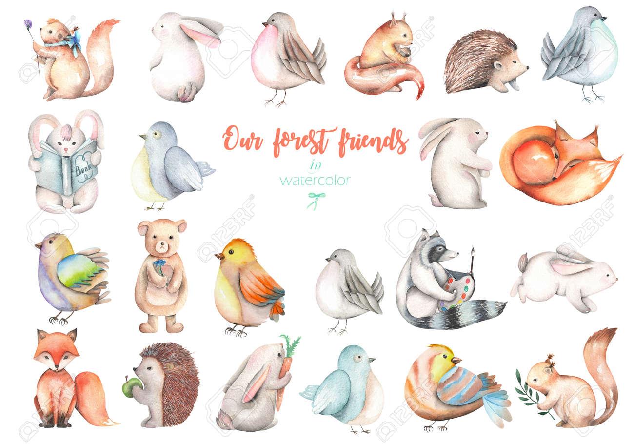白い背景に分離されたコレクション水彩のかわいい森の動物イラスト