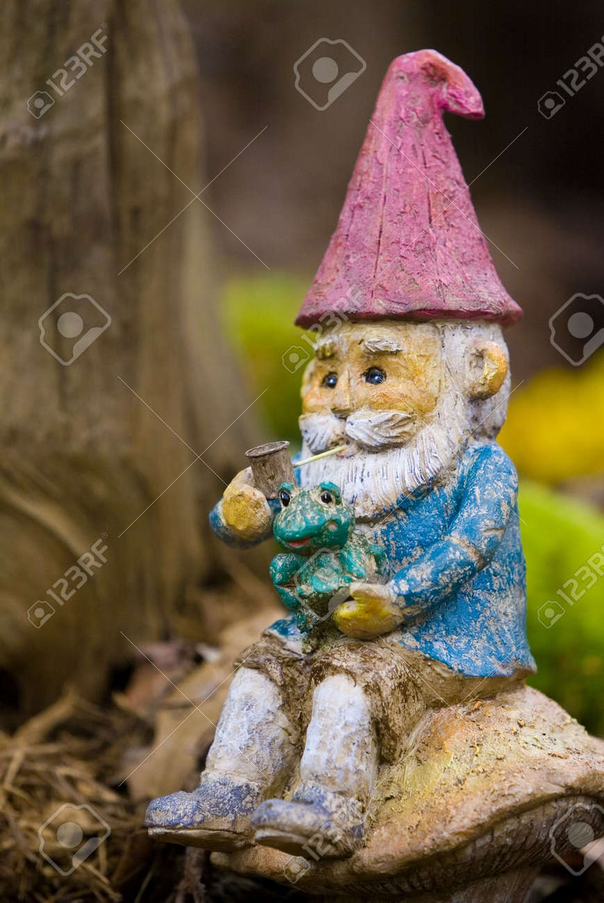 Sitting Garden Gnome Stock Photo, Picture And Royalty Free Image ...