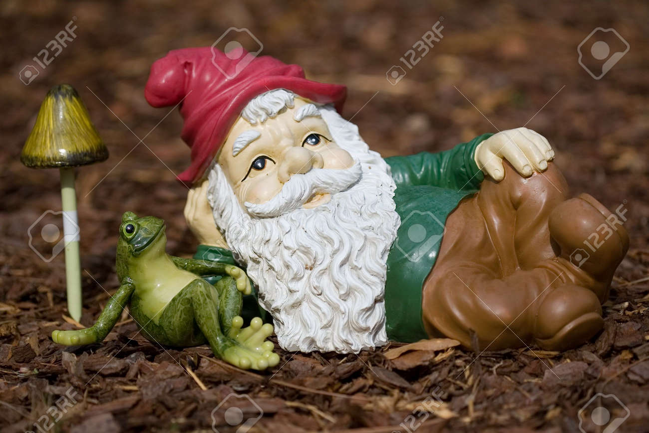 Garden Gnome Peaceful Relaxing With A Frog Stock Photo, Picture And ...